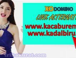 Link ALternatif XoDomino Agen Poker Terpercaya