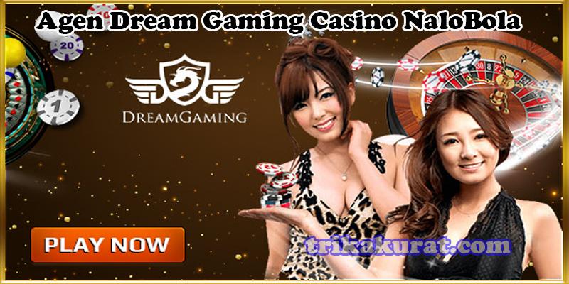 Agen Dream Gaming Casino NaloBola