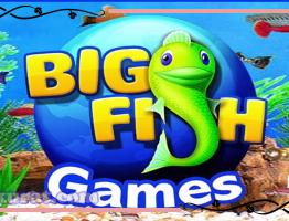 Agen Big Gaming Fishing Dermaga4D