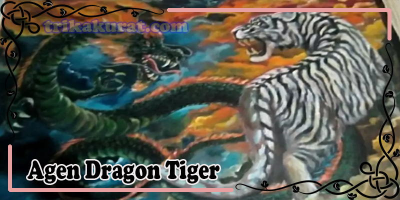 Agen Dragon Tiger QBet99